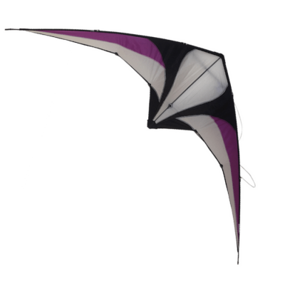 Raptor stunt kite