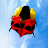 Inflatable ladybird